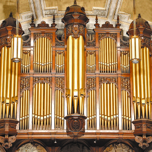 Hull.organ.case 300x300